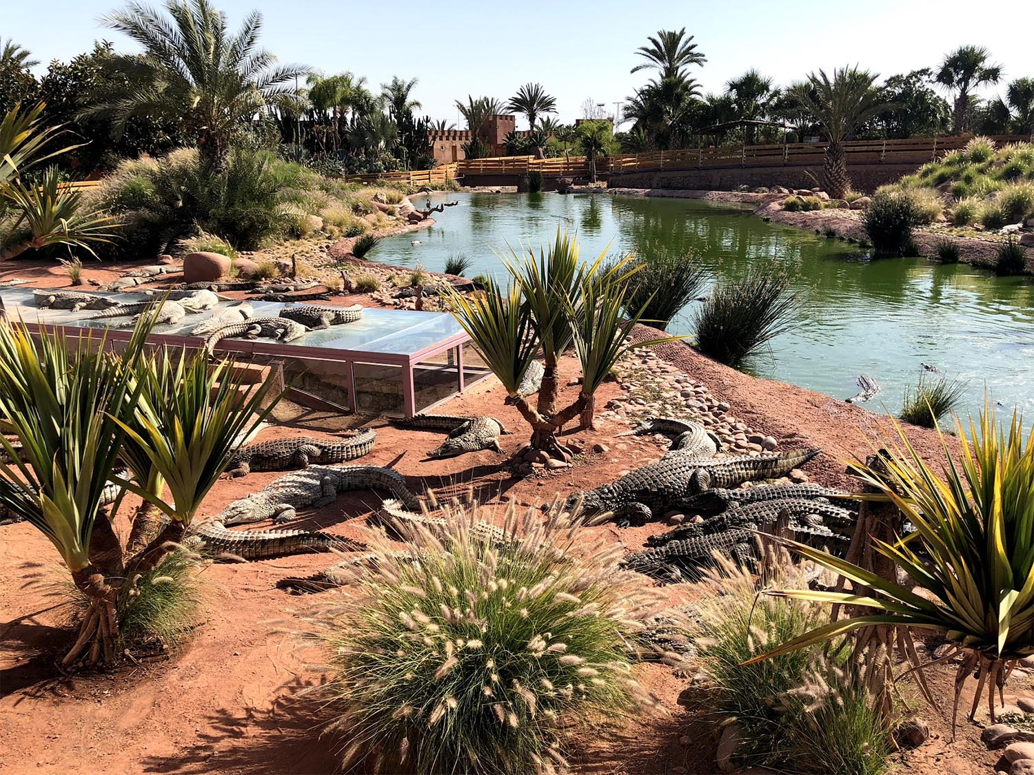Things To Do In Agadir And Travel Tips A Beauty Of Morocco
